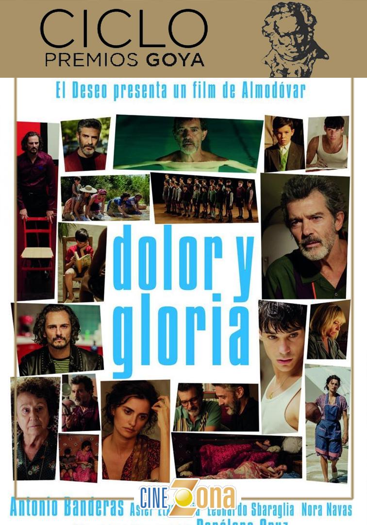 DOLOR Y GLORIA VIERNES 24